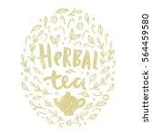 herbal tea illustration.... | Shutterstock .eps vector #564459580