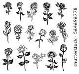 set of rose flower design... | Shutterstock .eps vector #564696778