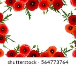 Frame Of Red Poppies  Common...