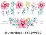 handpainted floral set.colorful ... | Shutterstock . vector #564899590