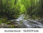 Relaxing Roaring Fork Creek...