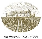 vintage engraved  hand drawn... | Shutterstock .eps vector #565071994