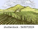 vintage engraved  hand drawn... | Shutterstock .eps vector #565072024