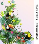 toucans in the tropical forest... | Shutterstock .eps vector #565154248