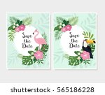 vector tropical cards set. cute ... | Shutterstock .eps vector #565186228