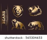 bears gold collections   vector ... | Shutterstock .eps vector #565304653