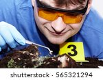 watching of evidence of fly... | Shutterstock . vector #565321294