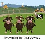 Cattle Farm. Vector Illustration