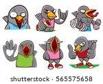 mix birds character
