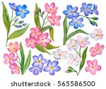 watercolor set of spring... | Shutterstock . vector #565586500
