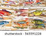 stamp collecting. philatelic.... | Shutterstock . vector #565591228