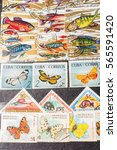 stamp collecting. philatelic.... | Shutterstock . vector #565591420