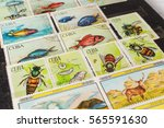 stamp collecting. philatelic.... | Shutterstock . vector #565591630