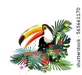 toucans in the tropical forest... | Shutterstock .eps vector #565661170