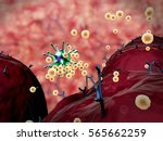 3d illustrations of virus and... | Shutterstock . vector #565662259