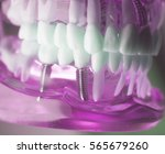 dental tooth dentistry student... | Shutterstock . vector #565679260