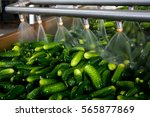 working process of the... | Shutterstock . vector #565877869