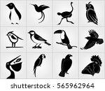 set of birds icons. penguin ...