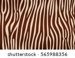 stripe animals jungle texture...   Shutterstock .eps vector #565988356