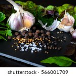 spices  herbs and garlic. food... | Shutterstock . vector #566001709