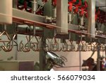poultry processing plant line. ... | Shutterstock . vector #566079034