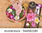 hands spa | Shutterstock . vector #566082280