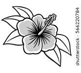 hibiscus illustration | Shutterstock .eps vector #566220784