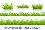 spring grass seamless pattern... | Shutterstock .eps vector #566245324