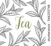 organic green white black tea... | Shutterstock .eps vector #566253748
