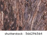 tree bark texture | Shutterstock . vector #566296564