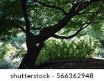 green scenario | Shutterstock . vector #566362948