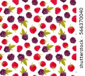seamless pattern with... | Shutterstock . vector #566370040