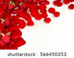 Stock photo background of red rose petals valentine s day 566450353