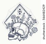human skull through which... | Shutterstock .eps vector #566482429