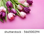 Bouquet Of Tulips On A Pink...