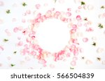 Stock photo frame made of pink roses petals on white background flat lay top view valentine s background 566504839