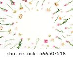 frame with pink and beige...   Shutterstock . vector #566507518