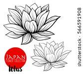 Lotus Flowers. Stock Line...