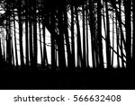 forest | Shutterstock . vector #566632408