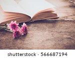 Vintage Novel Books With...