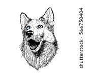 dog hand drawn illustration... | Shutterstock .eps vector #566750404