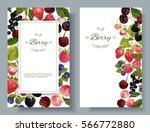 vector mix berry vertical... | Shutterstock .eps vector #566772880