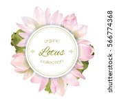 vector botanical round banner... | Shutterstock .eps vector #566774368