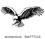 eagle emblem isolated on white... | Shutterstock .eps vector #566777113