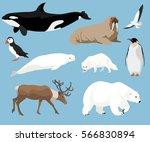 Set Of Arctic Animals...