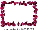Stock vector abstract background with flying pink red rose petals vector illustration isolated on white 566945824
