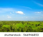 beautiful greenery paddy field... | Shutterstock . vector #566946853