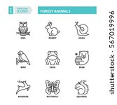 flat symbols about forest... | Shutterstock .eps vector #567019996