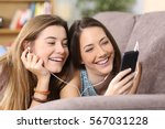 front view portrait of two...   Shutterstock . vector #567031228