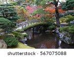 japanese garden in autumn ... | Shutterstock . vector #567075088